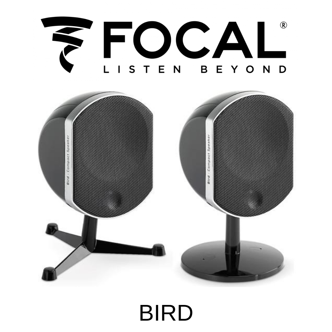 Focal Bird