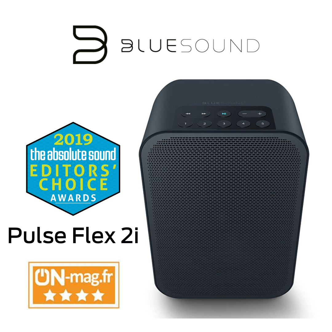 Bluesound - Haut-parleur portable multipièce sans fil Bluetooth Pulse Flex 2i